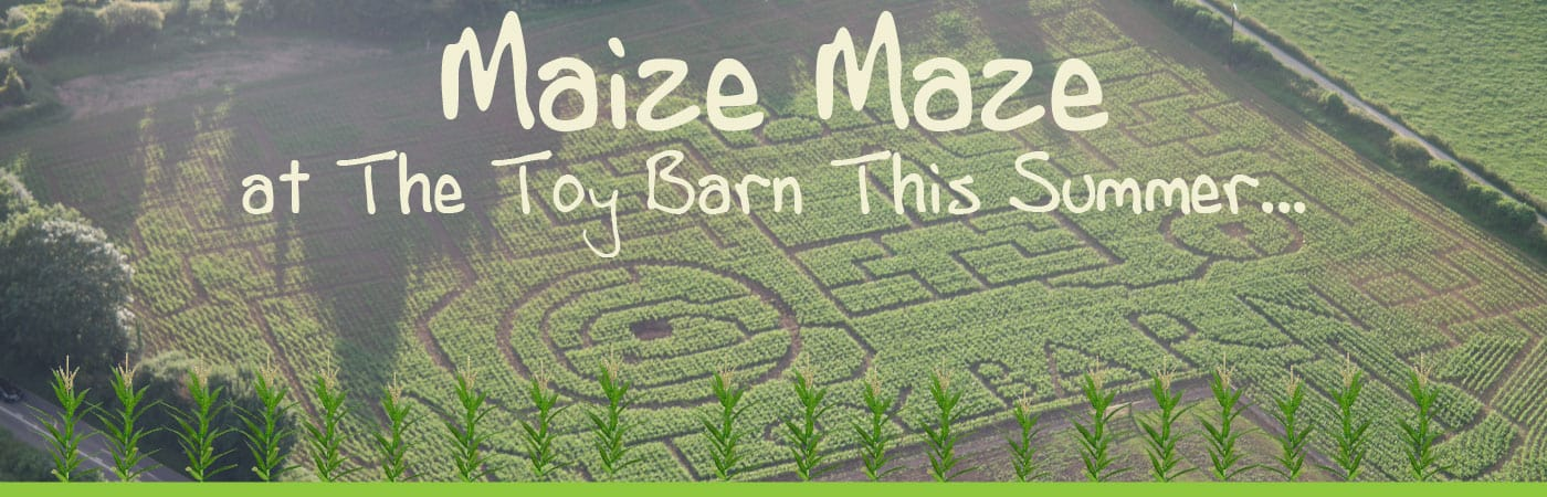 Maize Maze at The Toy Barn in Sherborne