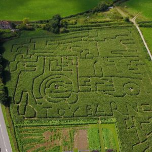 Maize Maze at The Toy Barn, Sherborne in Dorset